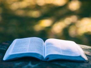 Lectura Nuevo Testamento