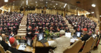 sínodo obispos fase diocesana